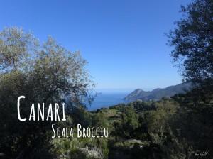 Randonnée Cap Corse Canari Scala Brocciu
