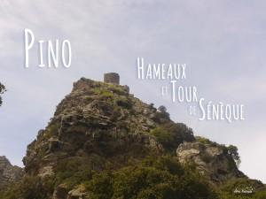 Randonnée à la demi-journée Cap Corse Pino Tour de Sénèque