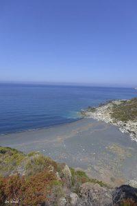 Nord de la plage de Nonza