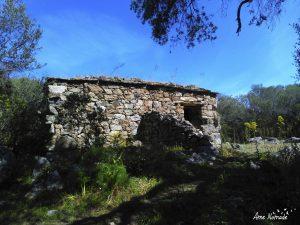 Randonnée Agriates Lotu Saleccia